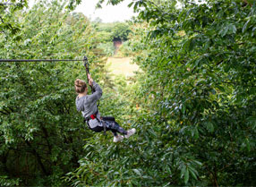 Go Ape's really long zip wire
