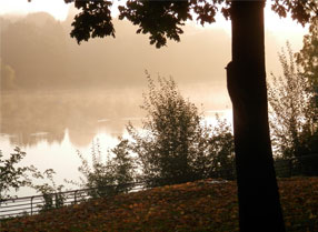 Early in morning in Mote Park with mist on the Lake