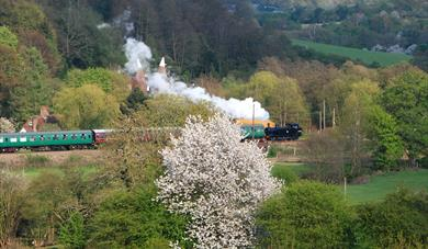 Take a trip with Spa Valley Railway through the countryside, heritage steam and diesel trains in Tunbridge Wells