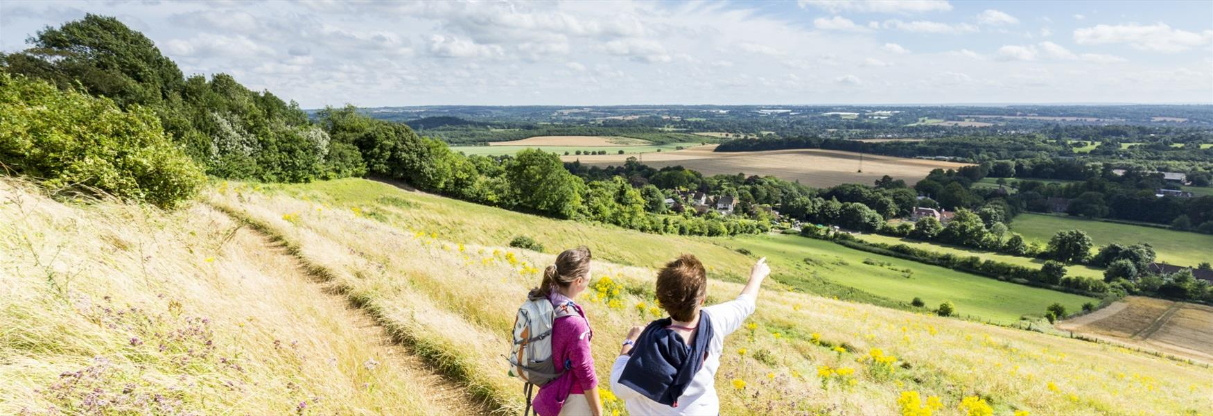 Walking on the North Downs