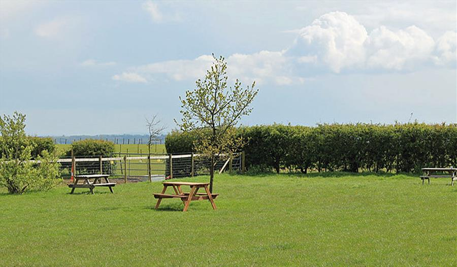 Coldblow Farm - Camping and Caravanning